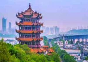 Study in China | BION