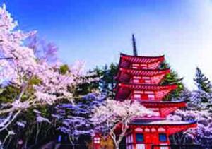 Study in Japan | BION